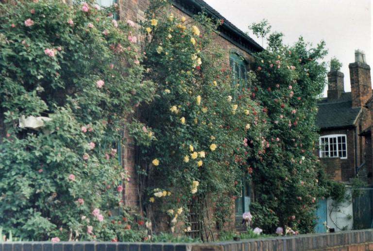 A photograph of Caroline's Father's garden in Lichfield in 1986.